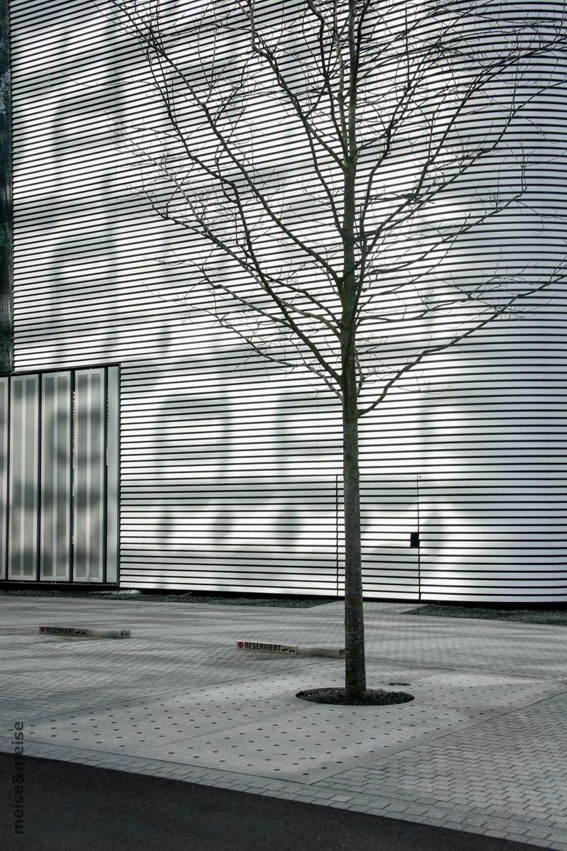 Stadtbaum #01